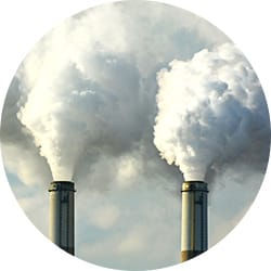 POLLUTION AFFECTS